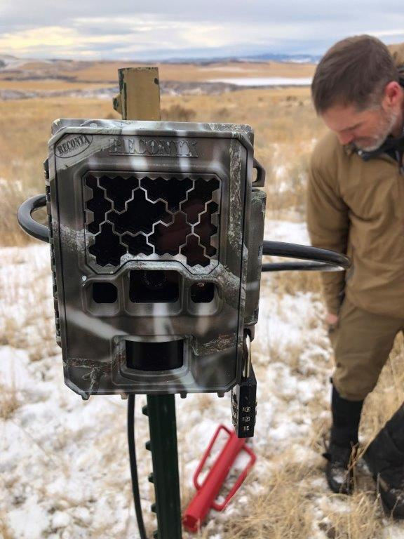 A remote trail camera