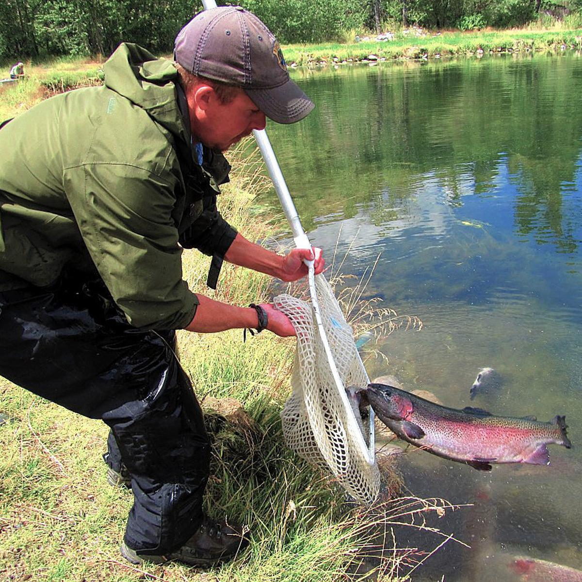 September trout stocking schedule for the Southeast Region