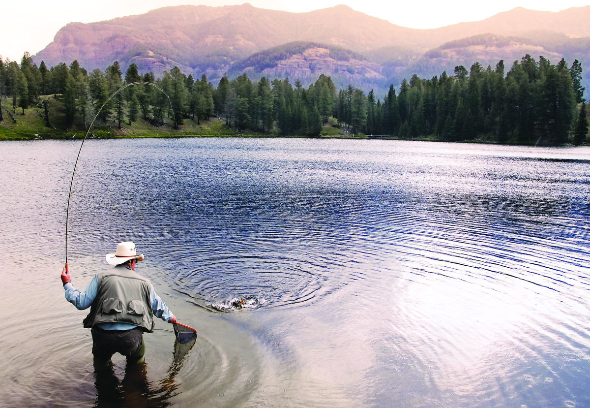 yellowstone national park makes list of top fishing parks in u s rh idahostatejournal com
