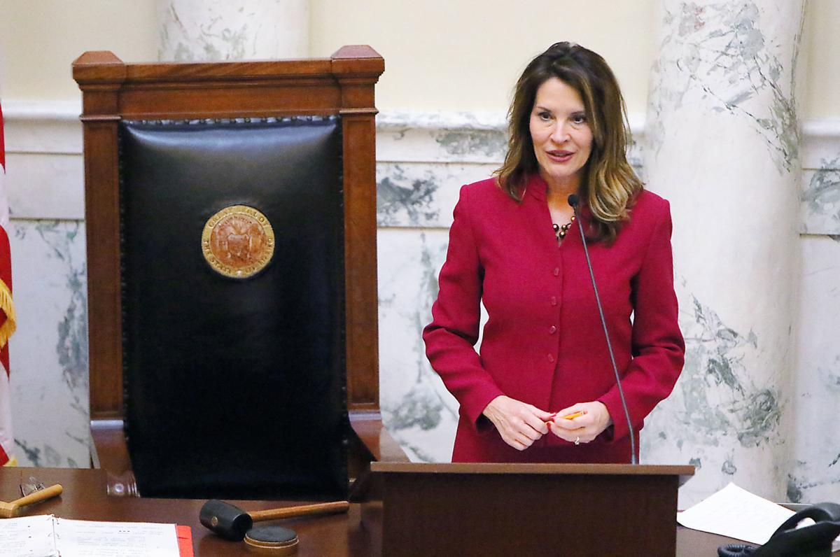 State Legislature, McGeachin leads State Senate