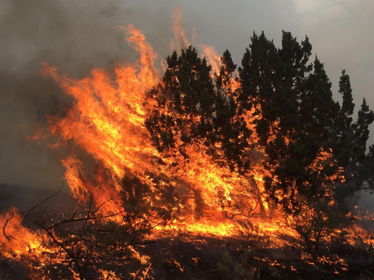 FIREFIGHTERS KEEP GIANT WILDFIRE AWAY FROM POCATELLO AND