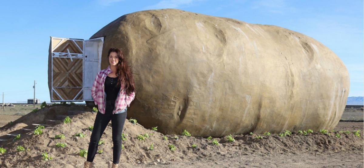 Potato hotel 2