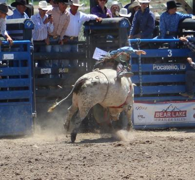Bull Riders are a brotherhood of their own