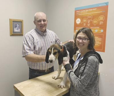 Rock Creek Veterinary Services in American Falls covers wide area