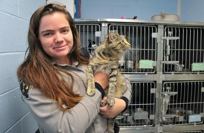Chubbuck Animal shelter