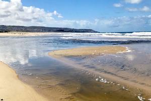 Beach Closures ...