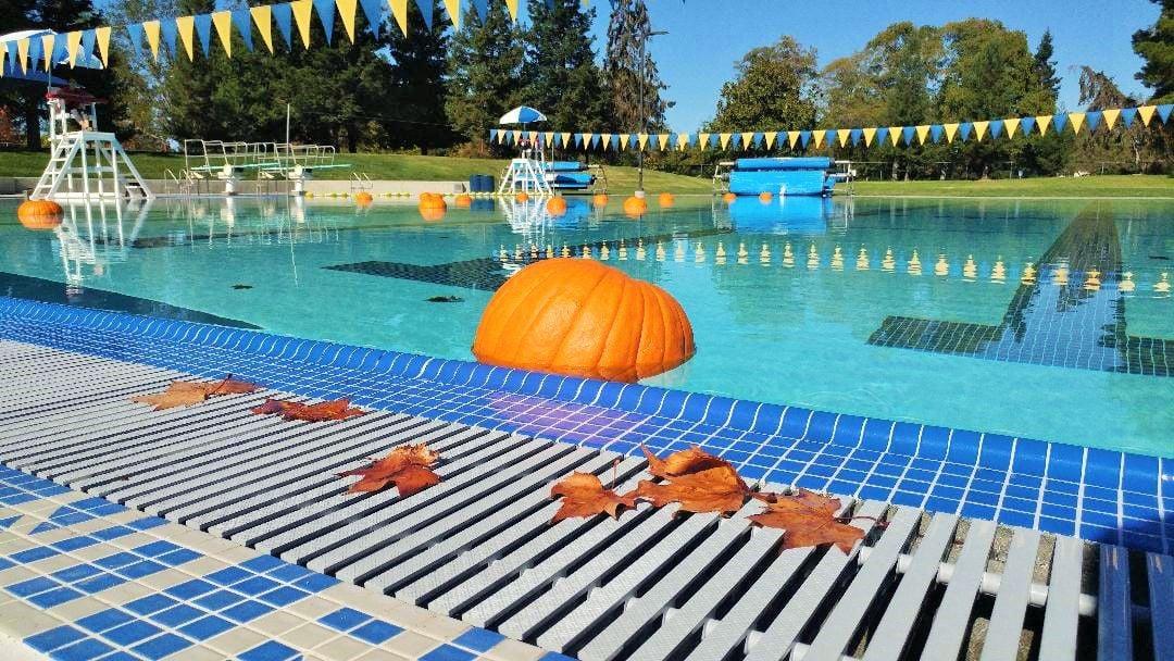 Floating Pumpkin Patch 2