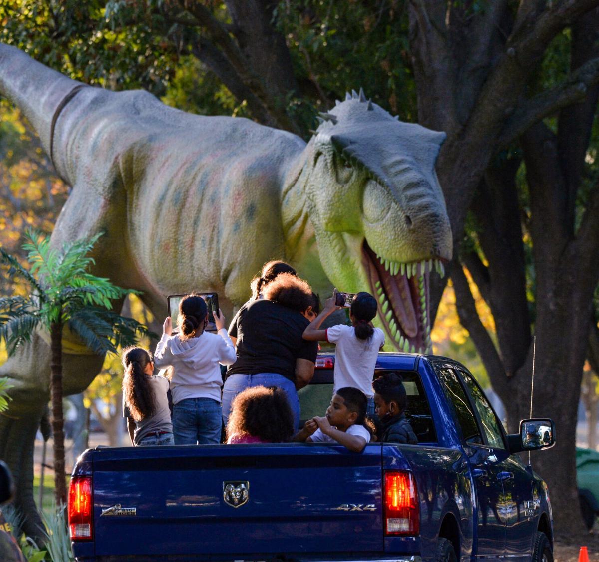 Dinosar Drive  11-14-20 1154