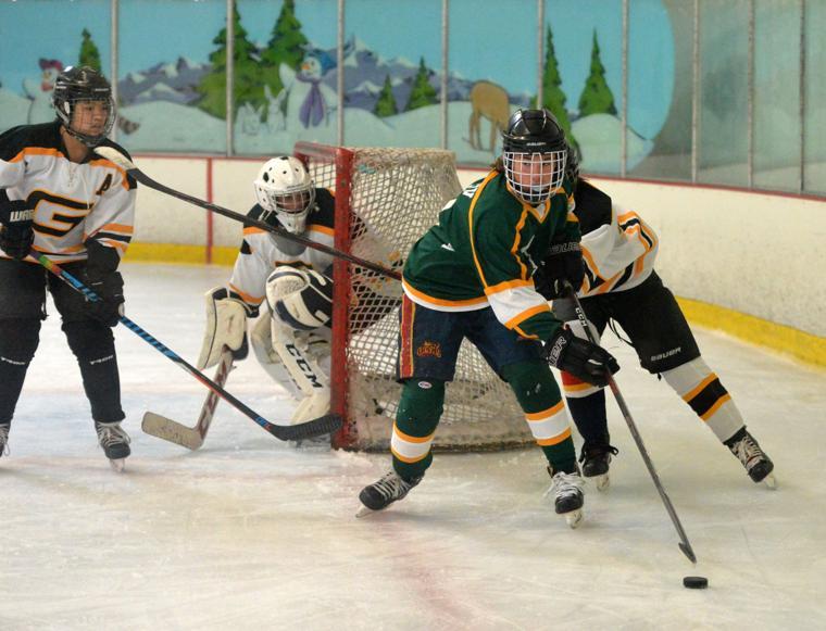 Hockey LHSvsGHS 03-24-19 155