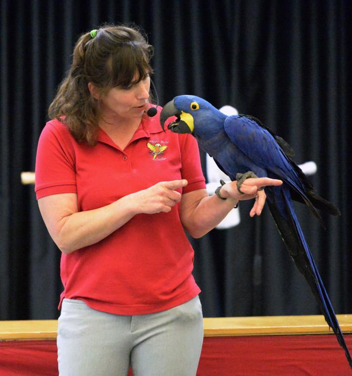 Happy Birds 03-30-19 312