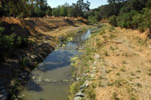 Verona Streambank Restoration 8-16-12 081