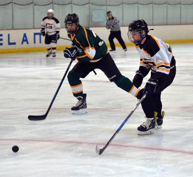 Hockey LHSvsGHS 03-24-19 053