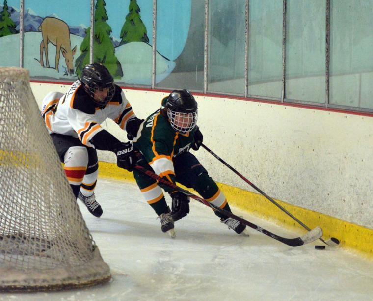 Hockey LHSvsGHS 03-24-19 147
