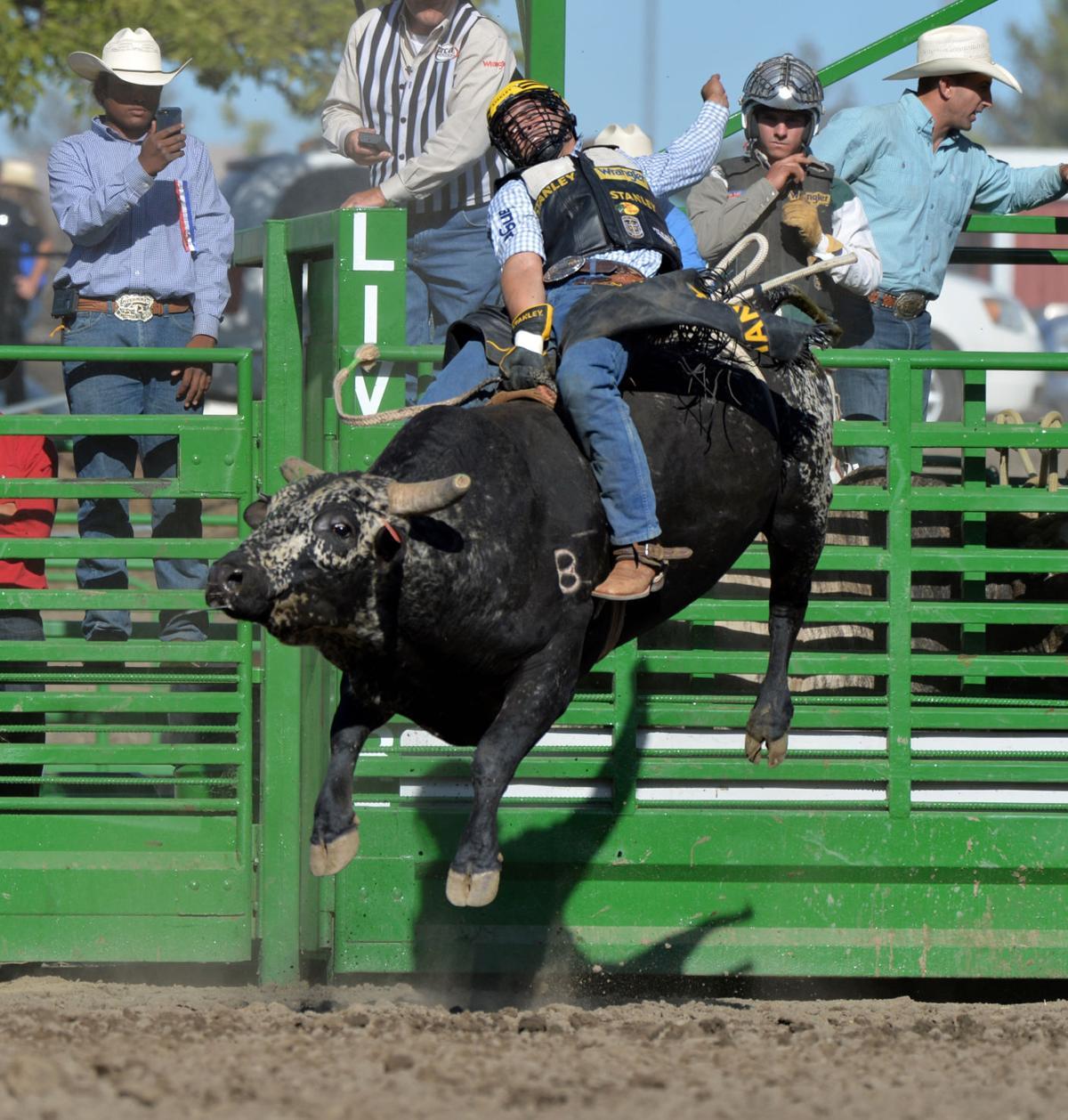 Liv Rodeo 06-10-18 2399