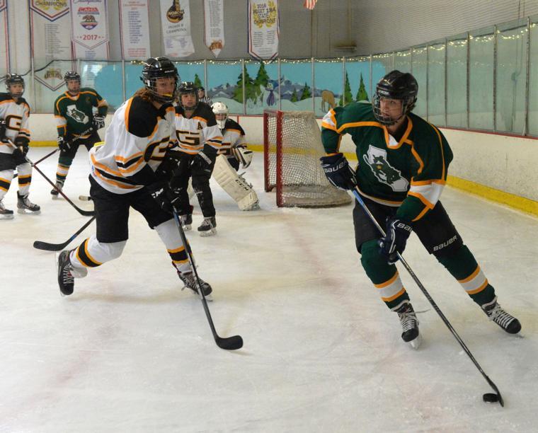 Hockey LHSvsGHS 03-24-19 894