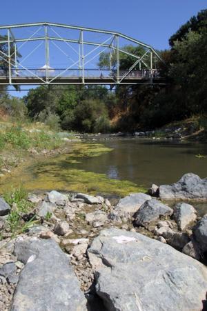 Verona Streambank Restoration 8-16-12 101