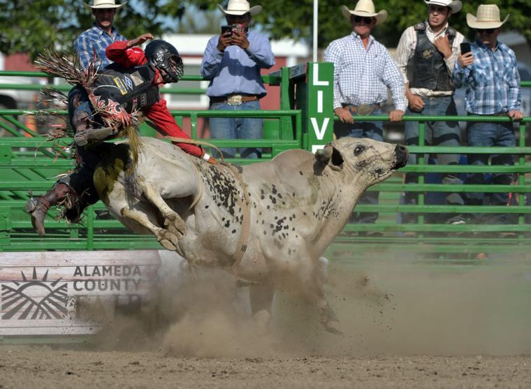 Liv Rodeo 06-09-19 2412