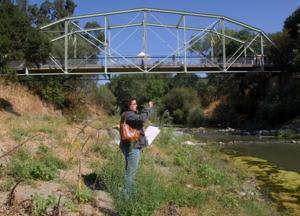Verona Streambank Restoration 8-16-12 133