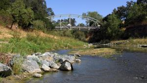 Verona Streambank Restoration 8-16-12 118