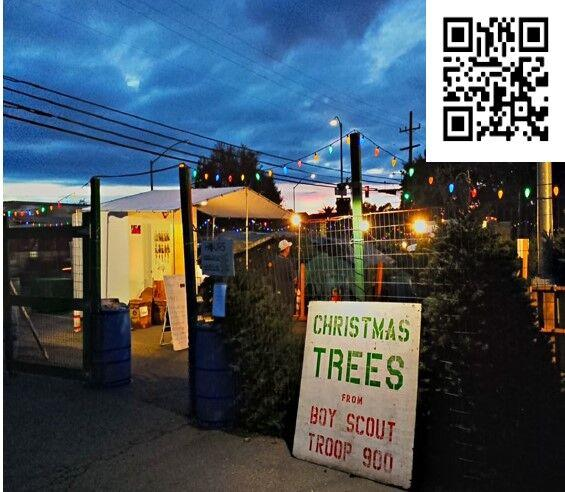 Scouts Prepare For Joyful  And Safe  Tree Sales