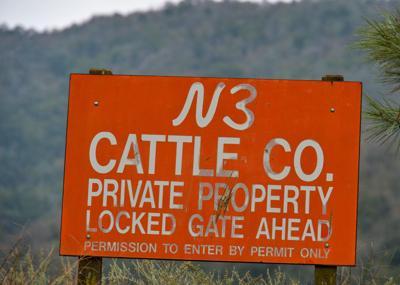 N3 Cattle Co 01-20-20 001