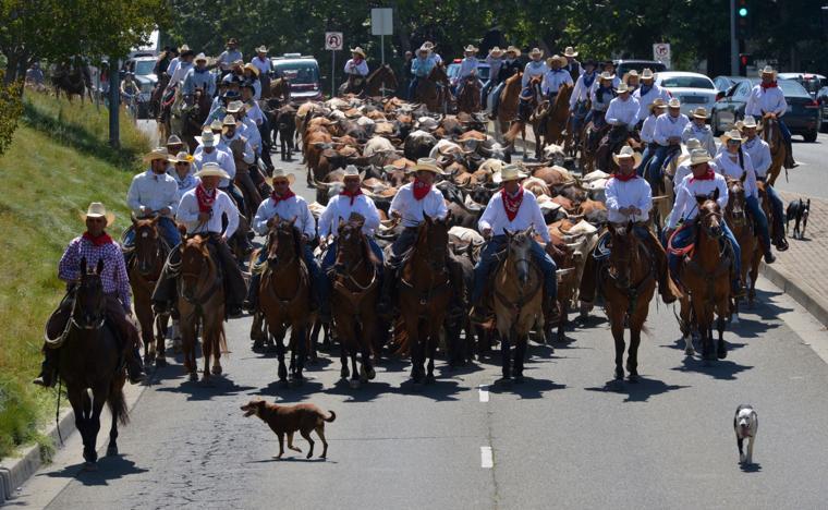 Last CattleDrive 06-14-19 212