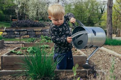 Plants Garden Water Veggies Kid Child Filip Urban Unsplash.jpg
