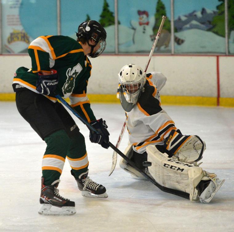 Hockey LHSvsGHS 03-24-19 302