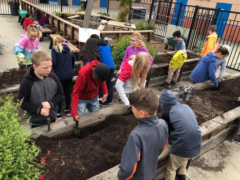LVJUSD - Garden decomposition lesson.jpeg