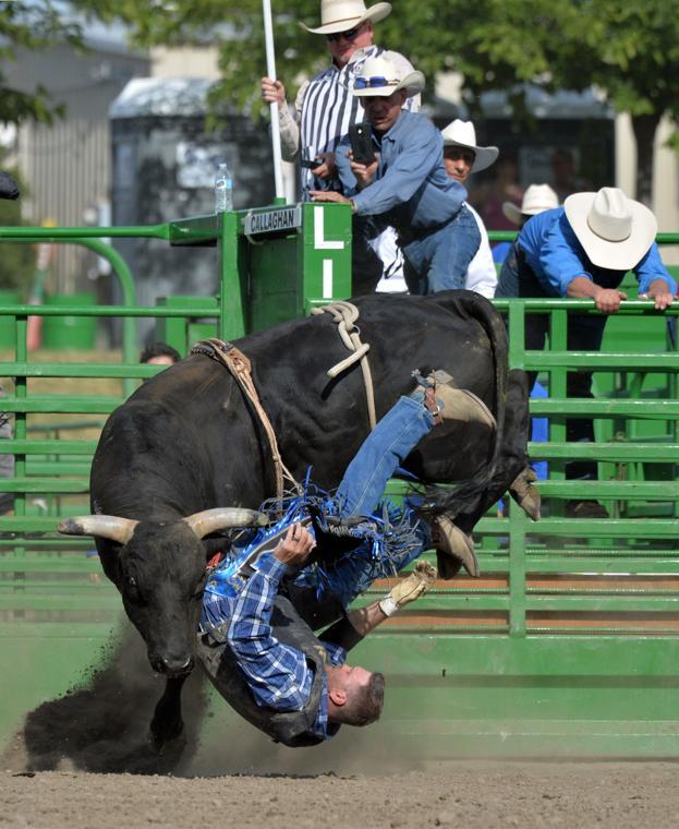 Liv Rodeo 06-09-19 2339