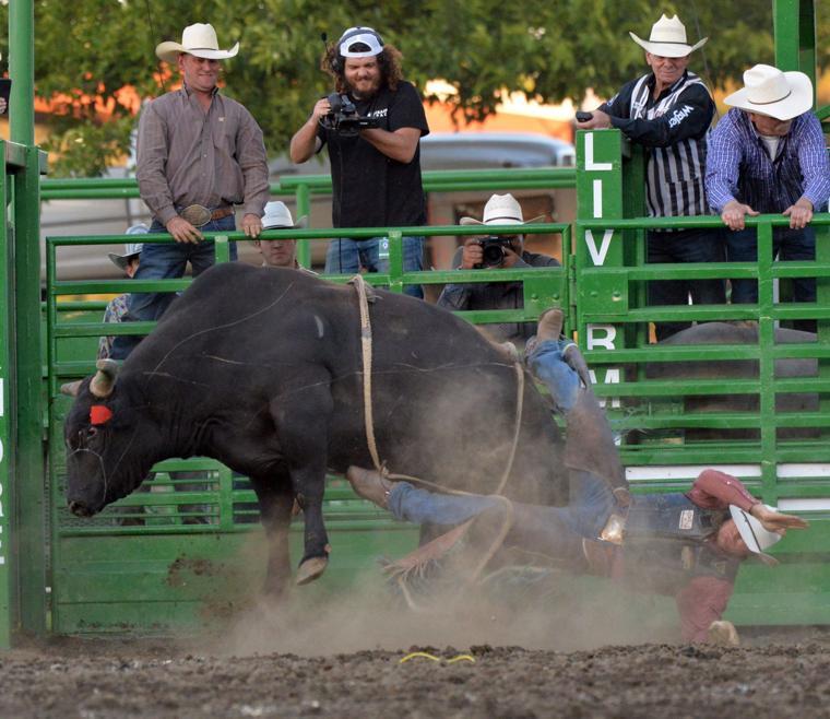 Liv Rodeo X Bull 06-07-19 1023