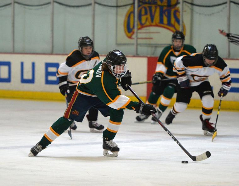 Hockey LHSvsGHS 03-24-19 476