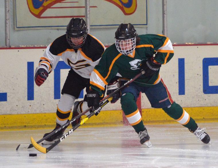 Hockey LHSvsGHS 03-24-19 023