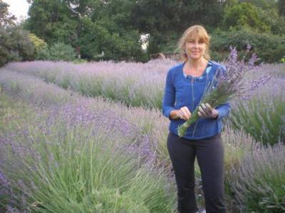 Garden Club - Rose and Lavender