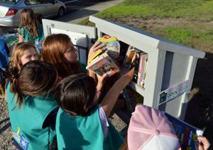 Little Library 11-03-16 171
