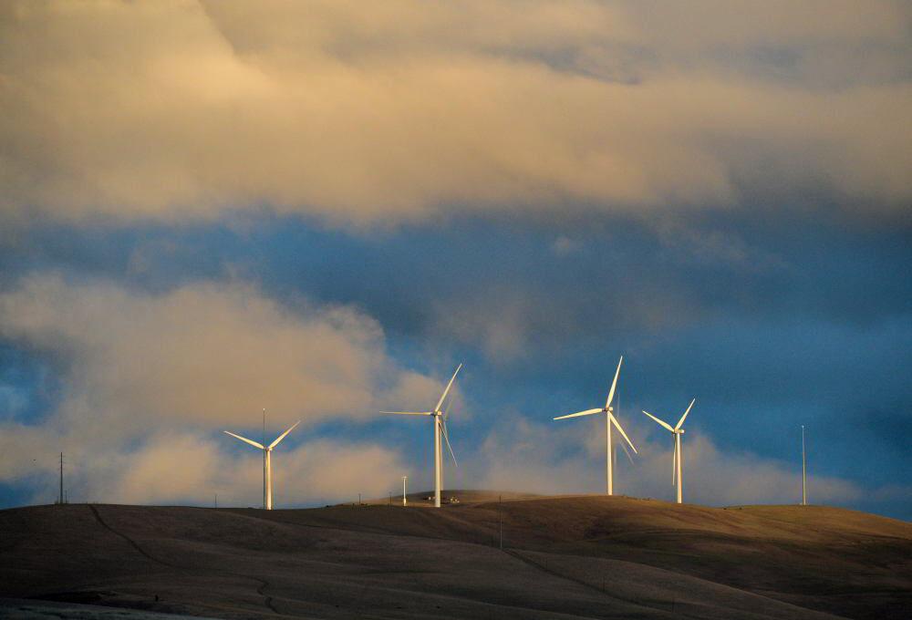 Windmills 01-22-21 002.JPG