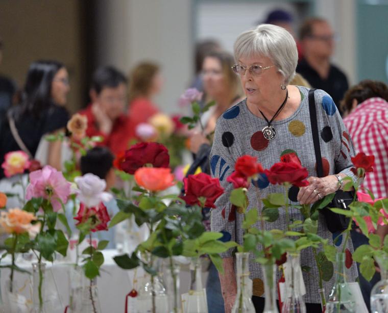 Pleas Rose Show 05-11-19 130