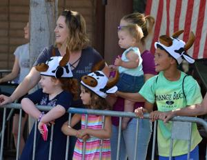 Spectators got into the spirit of the cattle drive in Pleasanton last Friday, June 15. The drive kicked off the opening of the Alameda County Fair (Photos - Doug Jorgensen).