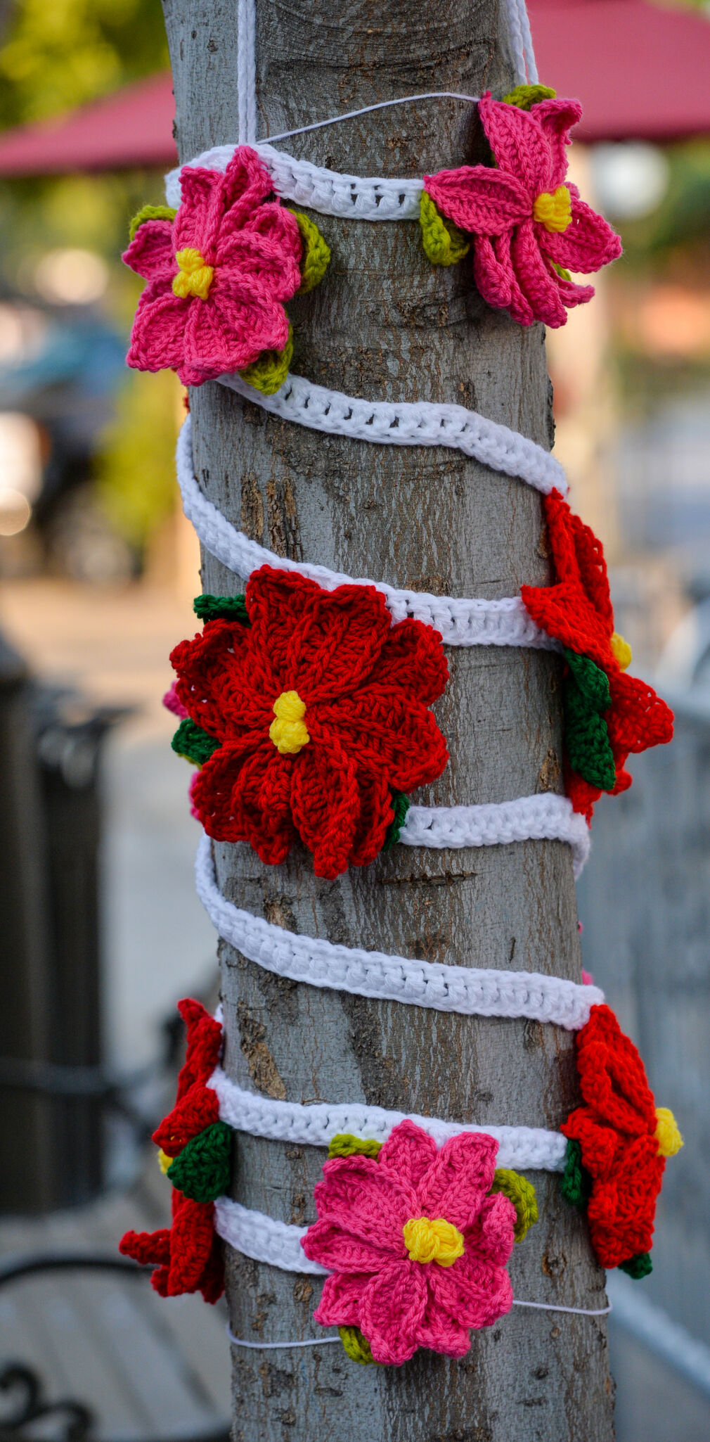 Tree Sweater  09-28-20 087