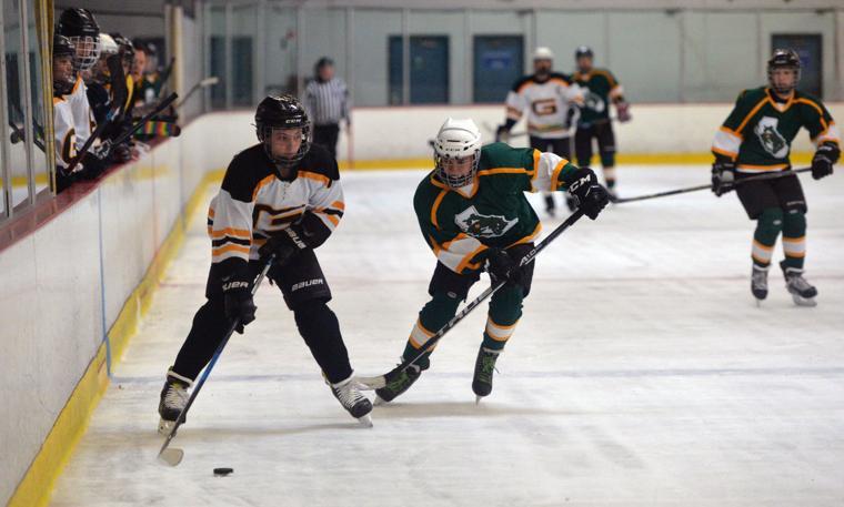 Hockey LHSvsGHS 03-24-19 329