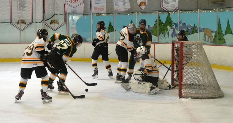 Hockey LHSvsGHS 03-24-19 868