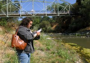 Verona Streambank Restoration 8-16-12 138