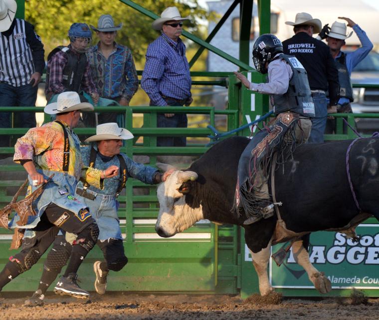 Liv Rodeo X Bull 06-07-19 577
