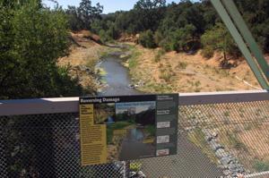 Verona Streambank Restoration 8-16-12 147