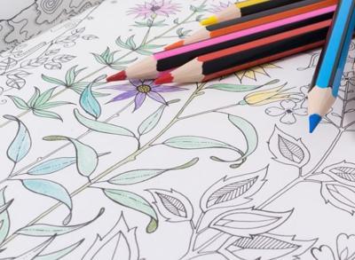 Dublin Lib, Adult Coloring pencils