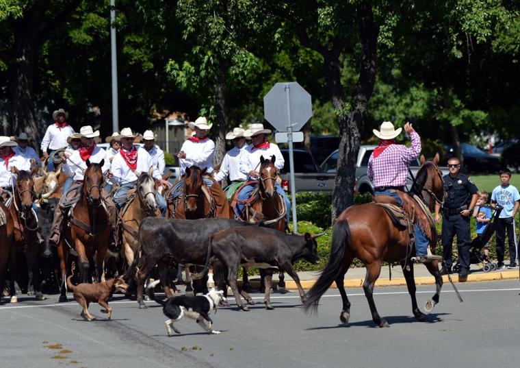 Last CattleDrive 06-14-19 408