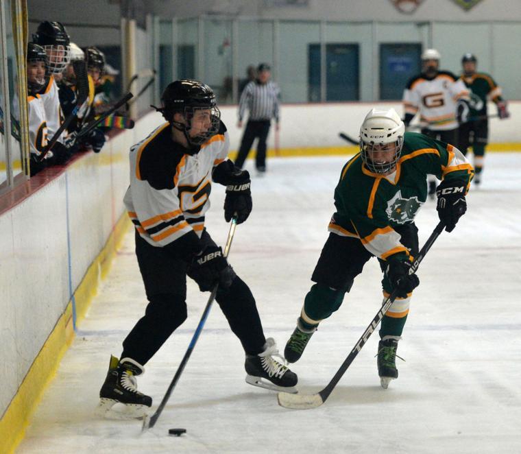 Hockey LHSvsGHS 03-24-19 331