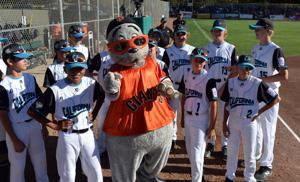 <p>The Livermore/Granada All Star Team, representing District 57, winners of the 2018 national championship, will again host the Intermediate World Series in Livermore. In the photo, the team is pictured with Lou Seal, mascot of the San Francisco Giants. (Photo – Doug Jorgensen)</p>