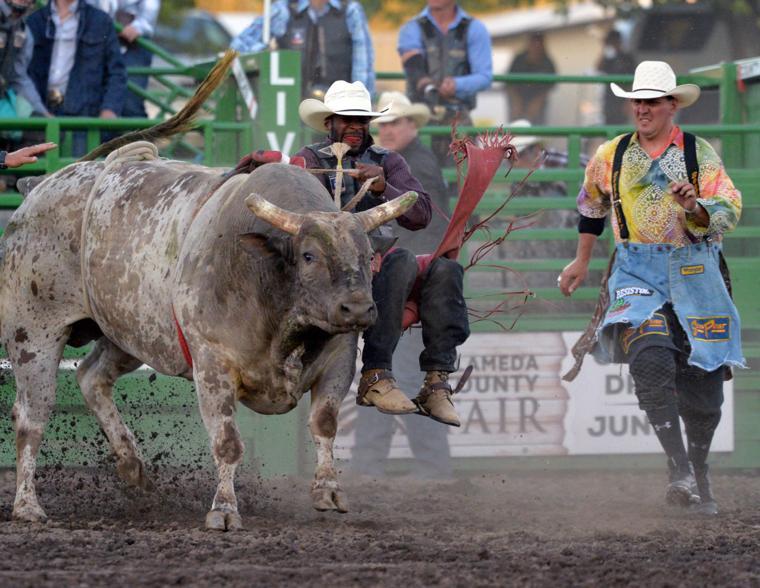 Liv Rodeo X Bull 06-07-19 1059