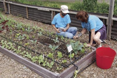 200801scl Gardeners